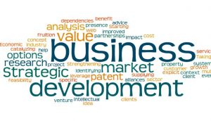 Business Development: The Basic Ingredients