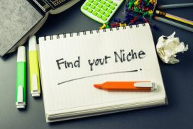 Determine Your Niche & Be Successful
